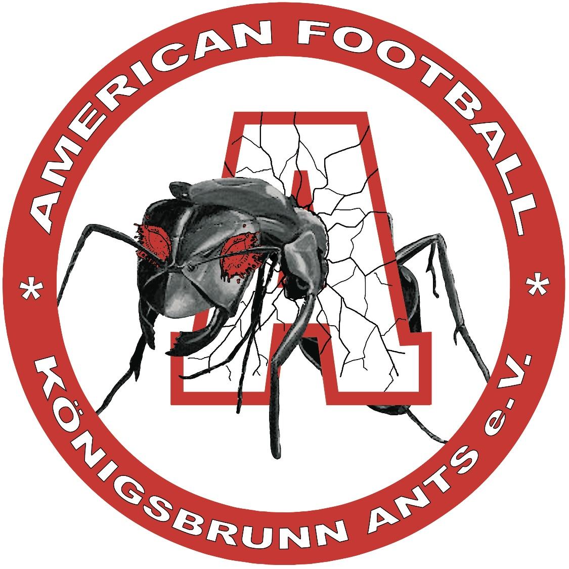 Königsbrunn Ants