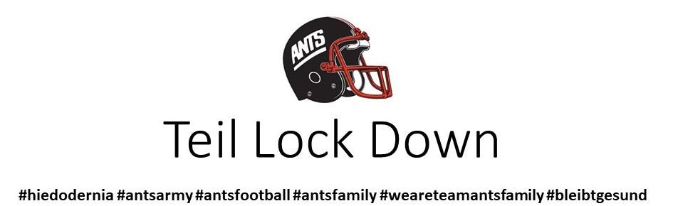 Teil Lock Down